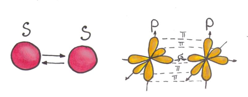 Рис.2 Сигма и пи связь в молекуле между атомами